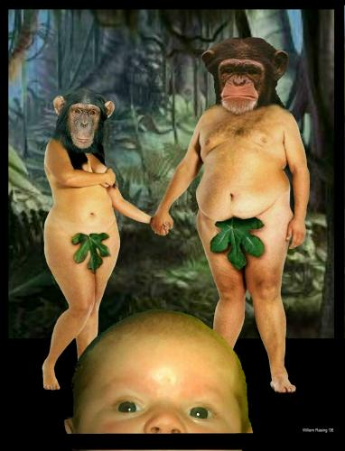 Cartoon: Adam and Eve (medium) by willemrasingart tagged evolution,