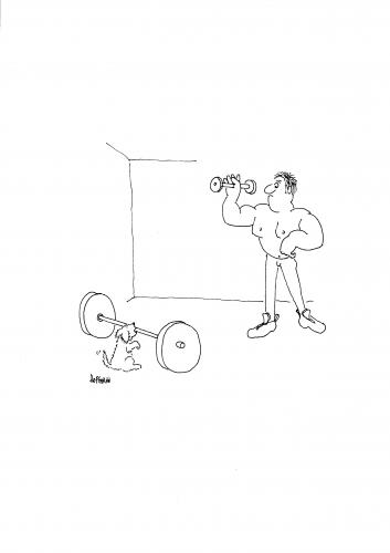 Cartoon: Bodybuilding (medium) by Frank Hoffmann tagged braver,hund,