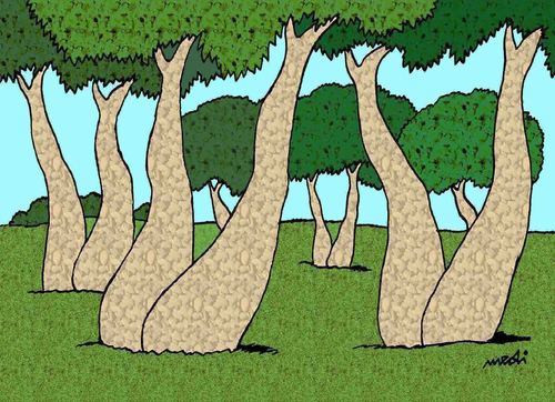Cartoon: humor in the forest (medium) by Medi Belortaja tagged erotic,feet,saddle,legs,trees,forest,humor