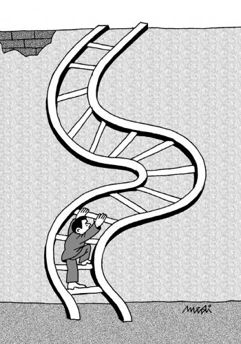 Cartoon: climbing stairs (medium) by Medi Belortaja tagged ladder,wall,dodge,stairs,climbing