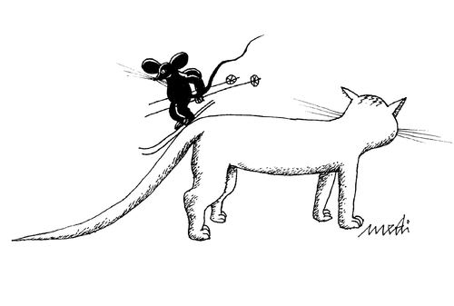 Cartoon: ready for skiing (medium) by Medi Belortaja tagged humor,cat,mouse,skiing,tail