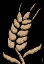 Cartoon: african wheat (small) by Medi Belortaja tagged african,wheat