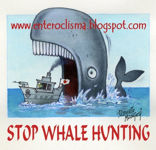 Cartoon: Stop Whale Hunting (medium) by Roberto Mangosi tagged whale,hunting