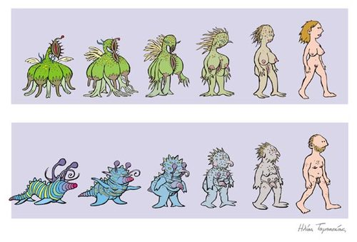 Cartoon: Evolution of Man and Woman (medium) by etc tagged men,women,alien,evolution