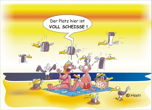Cartoon: Möwe Emma und Konsorten (medium) by Hösti tagged möwe,emma,robbi,willi,shithappens,hösti,cartoons,küste,ostfriesland