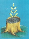 Cartoon: Rebirth (small) by ercan baysal tagged tree,leaf,cartoon,future,artist,humor,satire,handmade,art,work,artwork,coloured,blue,herb,earthen,flowerpot,ilüstrasyon,baysal