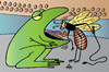 Cartoon: Frog (small) by Alexei Talimonov tagged frog